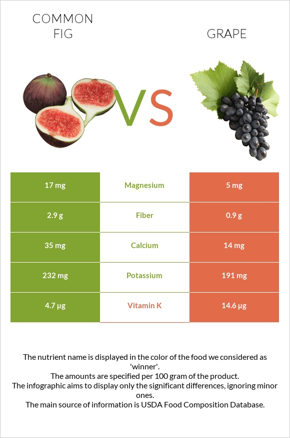 Common fig vs Grape infographic