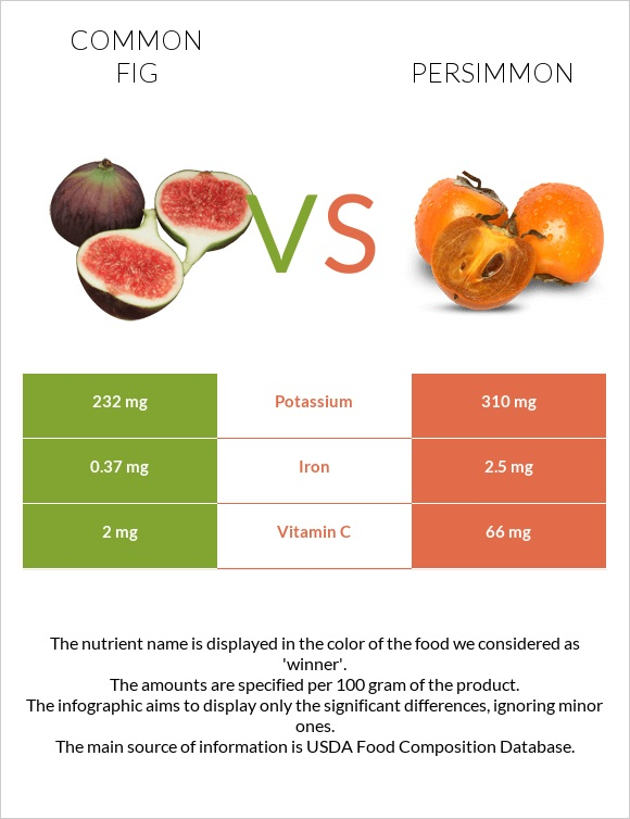 Common fig vs Persimmon infographic