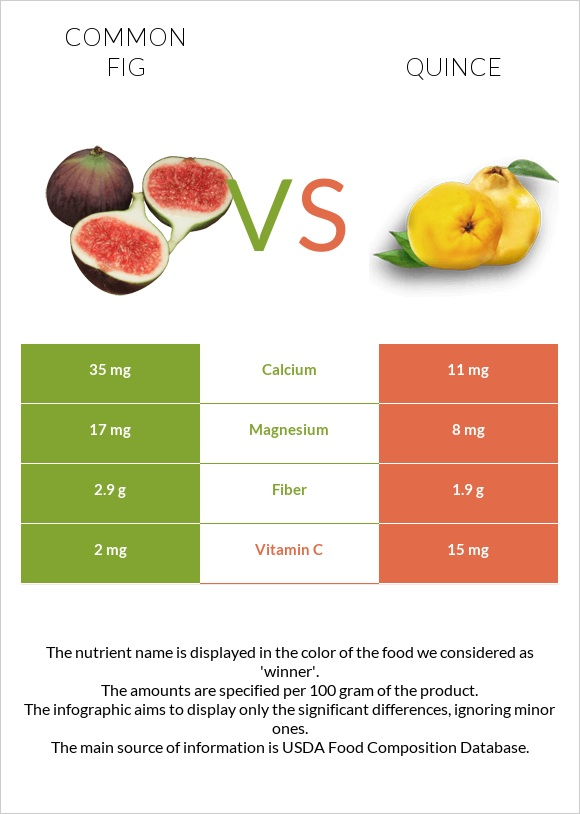 Common fig vs Quince infographic