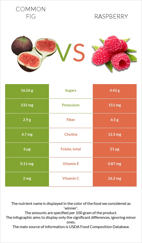 Common fig vs Raspberry infographic