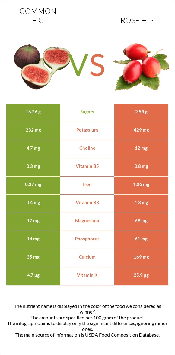 Common fig vs Rose hip infographic