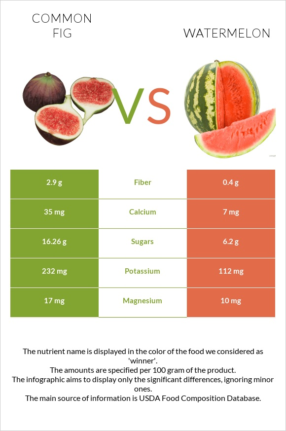 Common fig vs Watermelon infographic