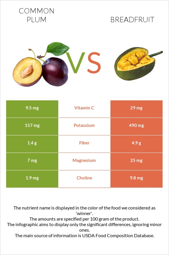Common plum vs Breadfruit infographic