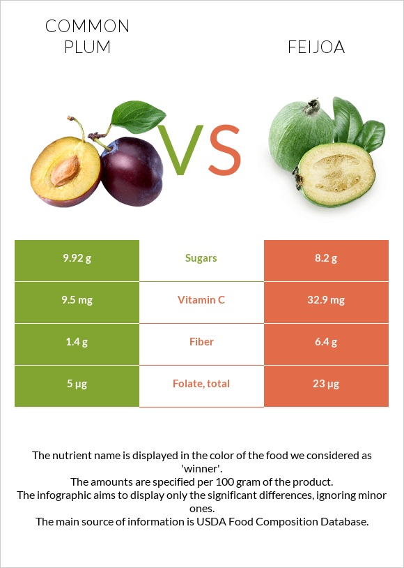 Common plum vs Feijoa infographic