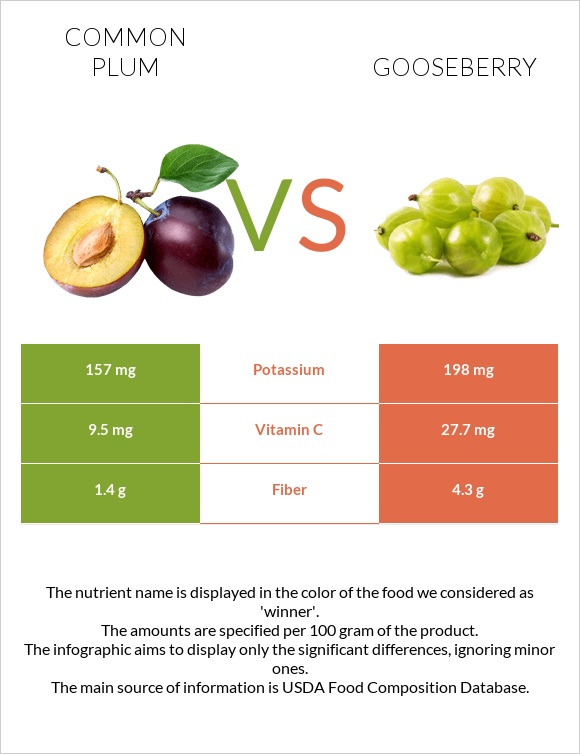 Common plum vs Gooseberry infographic