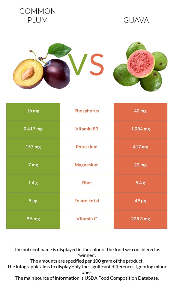 Common plum vs Guava infographic