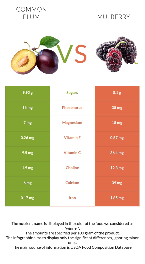 Common plum vs Mulberry infographic