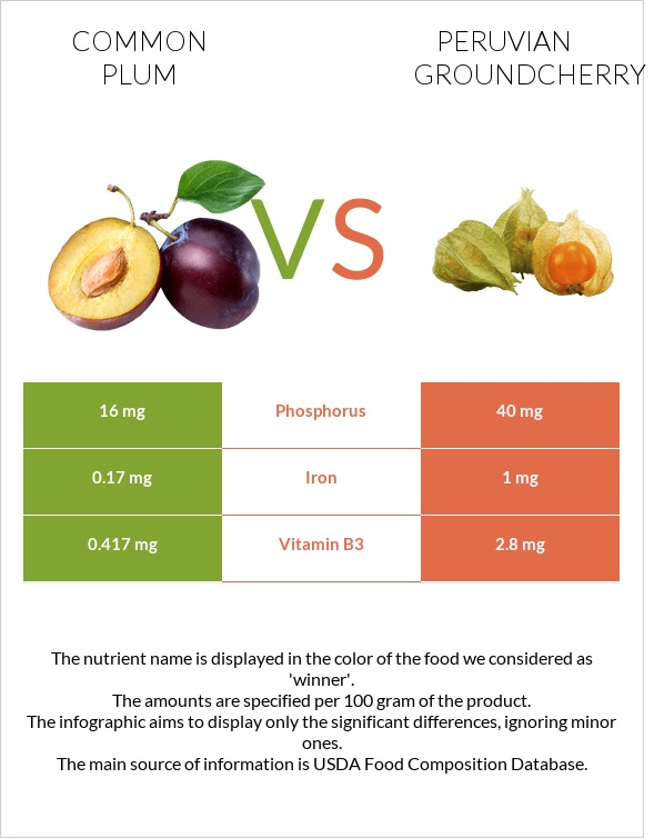 Common plum vs Peruvian groundcherry infographic