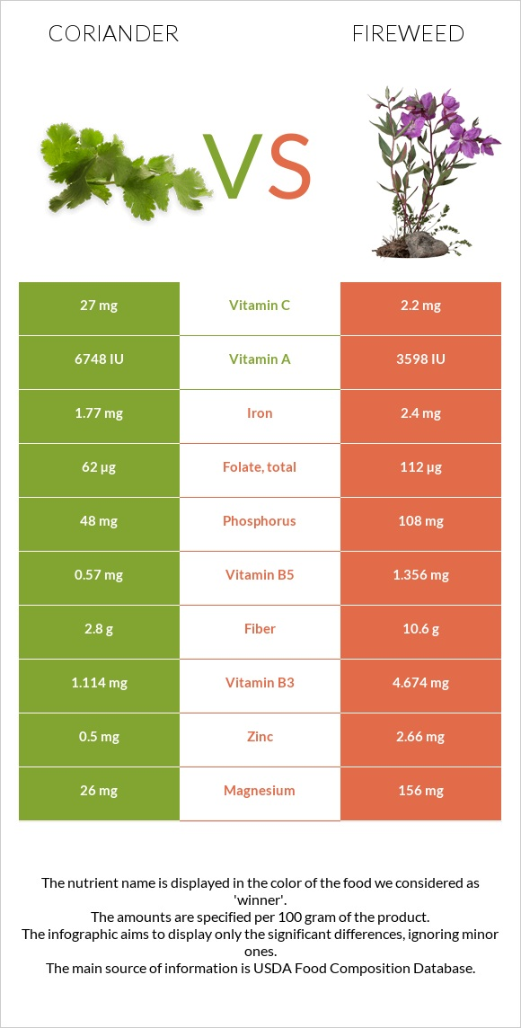Coriander vs Fireweed infographic