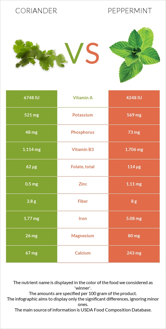 Coriander vs Peppermint infographic