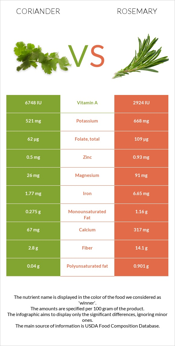 Coriander vs Rosemary infographic
