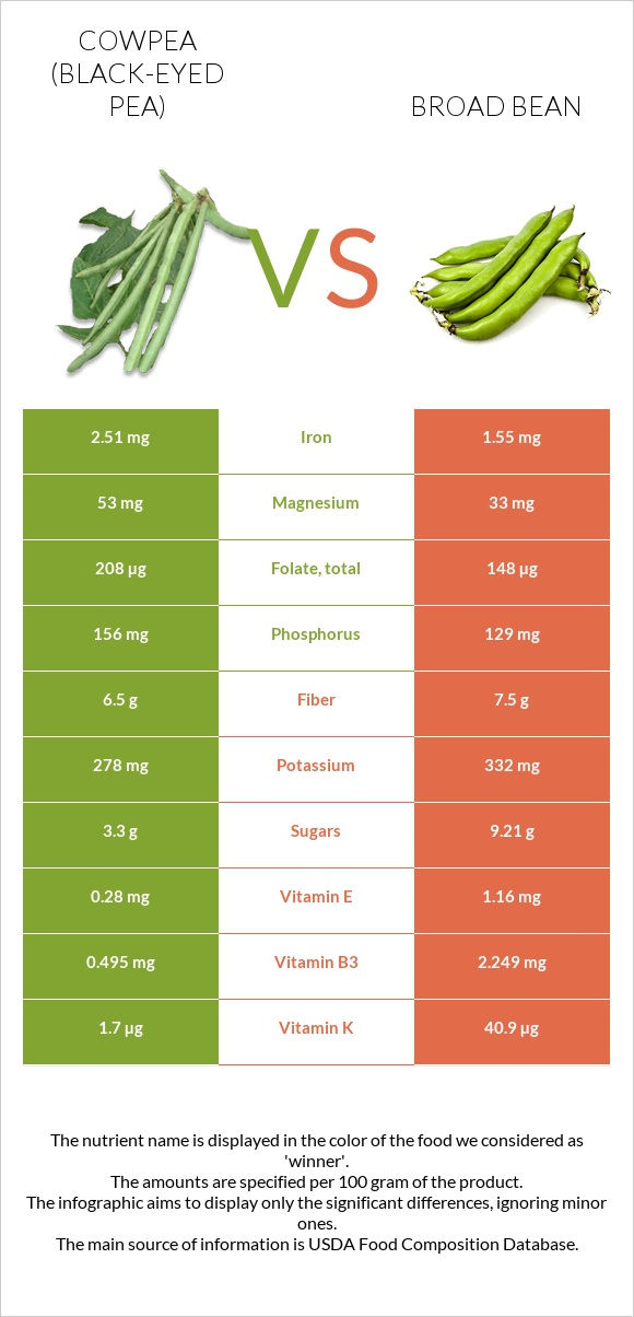 Cowpea vs Broad bean infographic