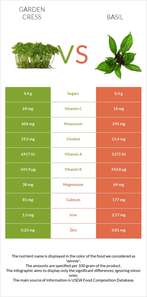 Garden cress vs Basil infographic