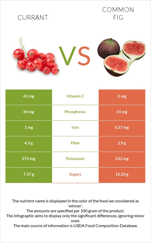 Currant vs Common fig infographic