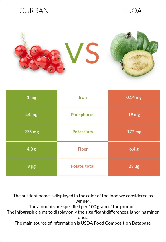 Currant vs Feijoa infographic