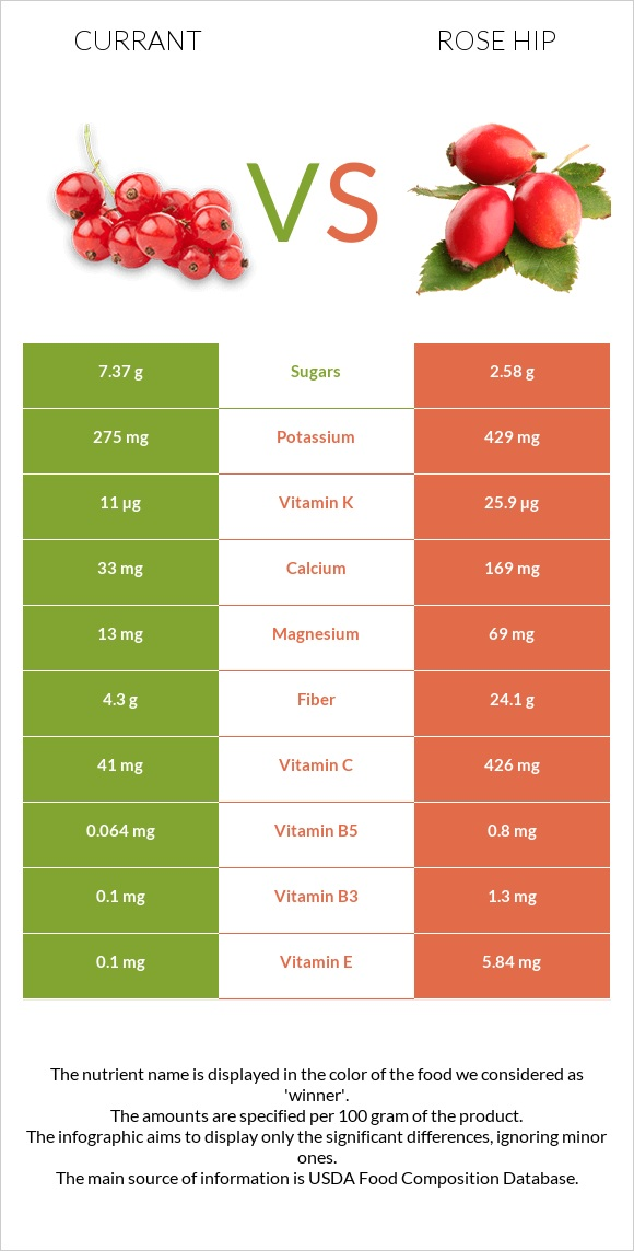 Currant vs Rose hip infographic