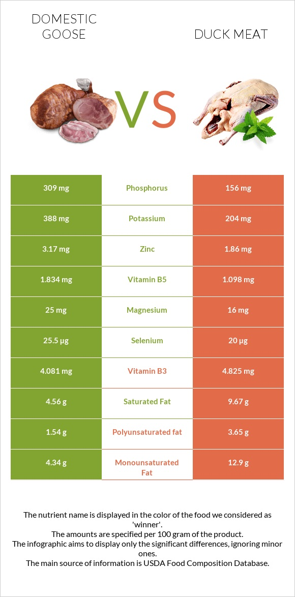 Domestic goose vs Duck meat infographic