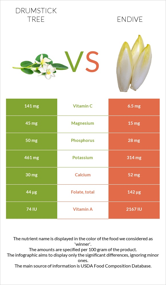 Drumstick tree vs Endive infographic
