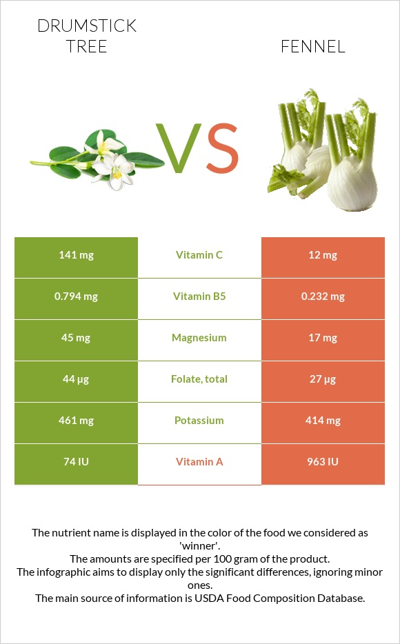 Drumstick tree vs Fennel infographic
