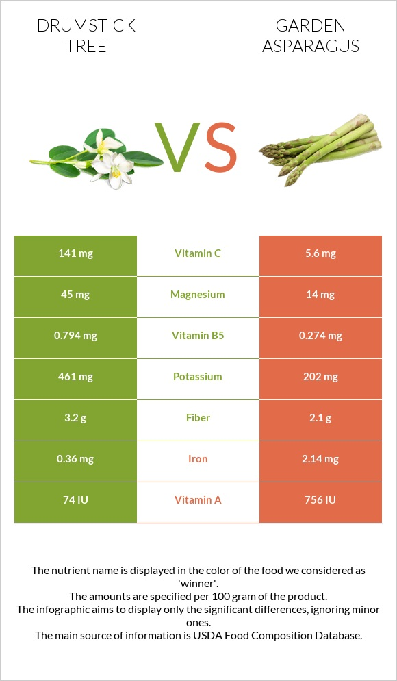Drumstick tree vs Garden asparagus infographic