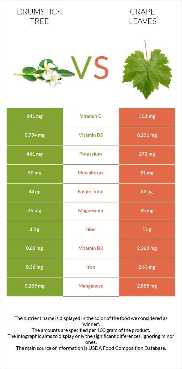 Drumstick tree vs Grape leaves infographic