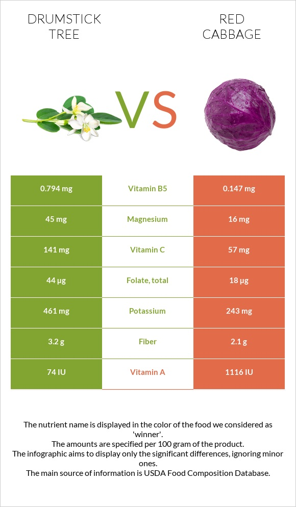 Drumstick tree vs Red cabbage infographic