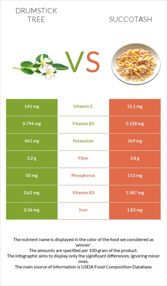 Drumstick tree vs Succotash infographic