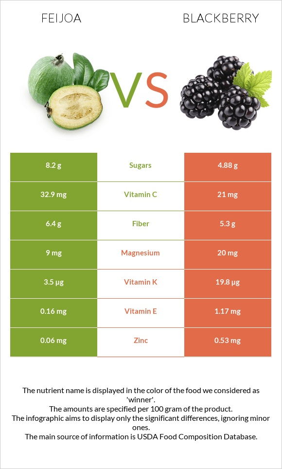 Feijoa vs Blackberry infographic
