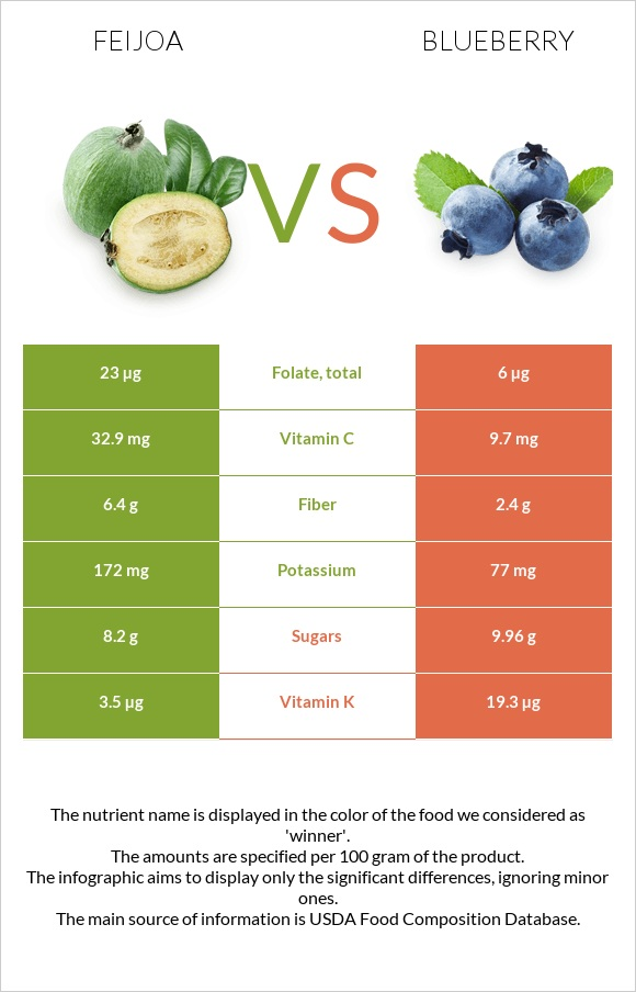 Feijoa vs Blueberry infographic