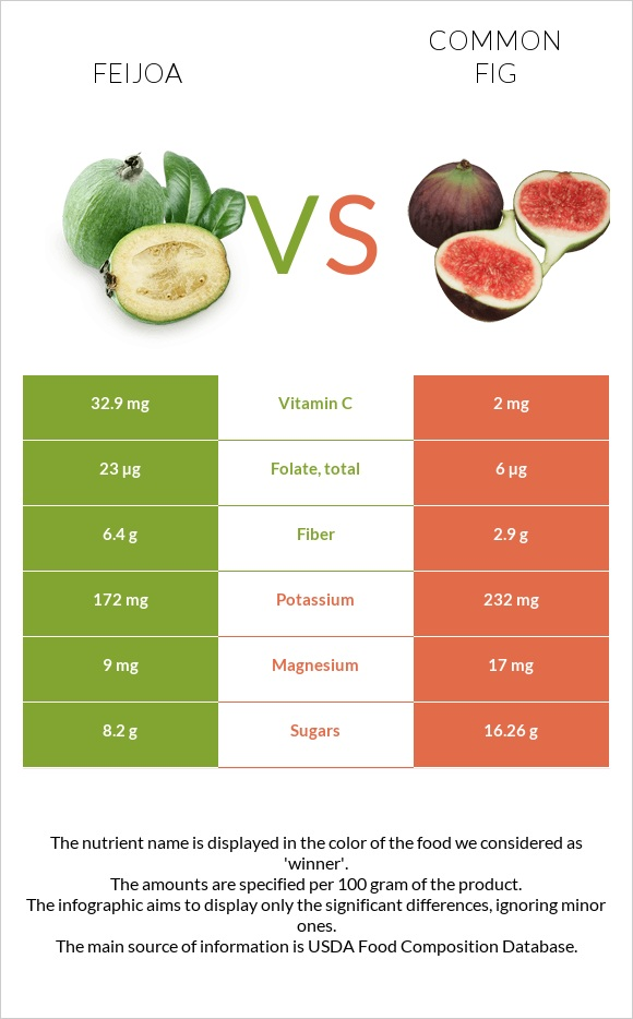 Feijoa vs Common fig infographic