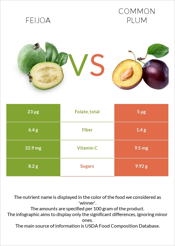 Feijoa vs Common plum infographic