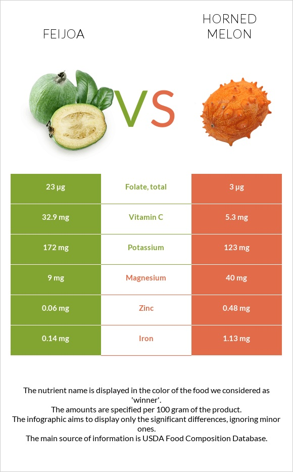 Feijoa vs Horned melon infographic