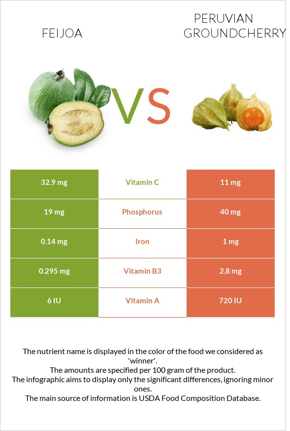 Feijoa vs Peruvian groundcherry infographic