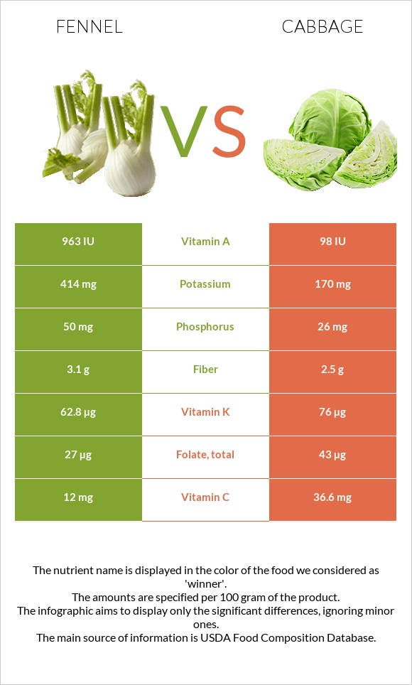 Fennel vs Cabbage infographic
