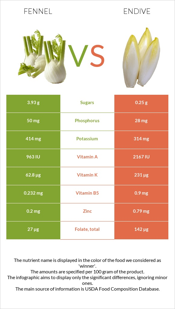 Fennel vs Endive infographic