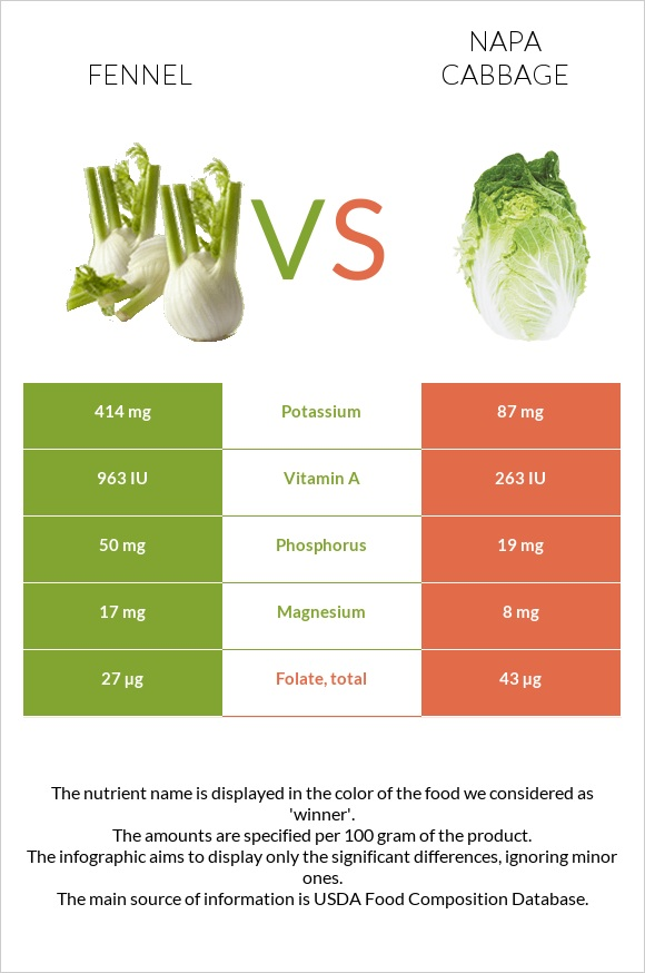 Fennel vs Napa cabbage infographic