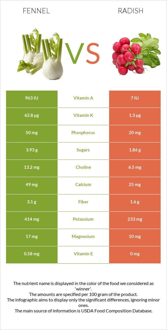 Fennel vs Radish infographic