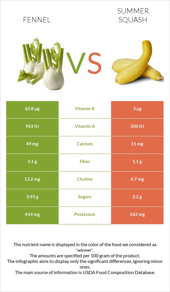 Fennel vs Summer squash infographic