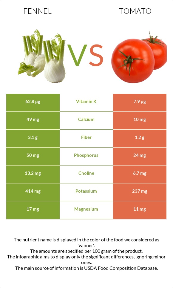 Fennel vs Tomato infographic