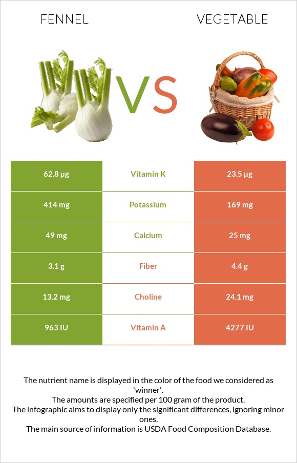 Fennel vs Vegetable infographic