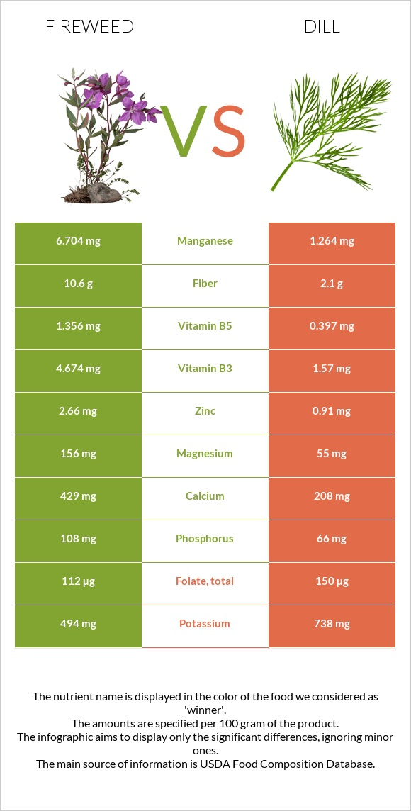 Fireweed vs Dill infographic