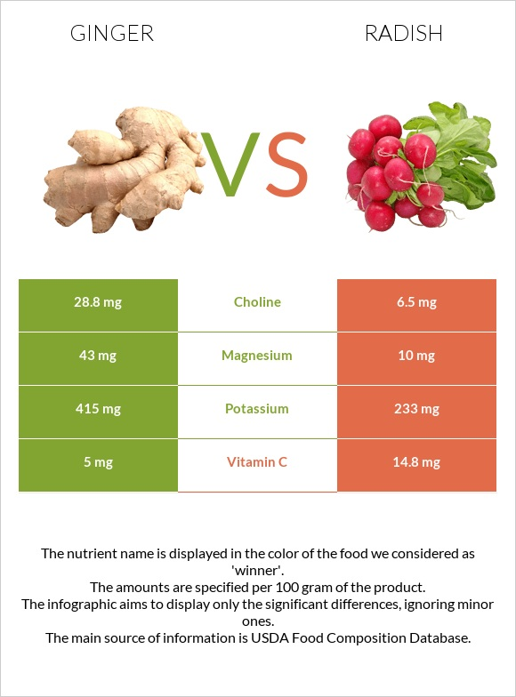 Ginger vs Radish infographic