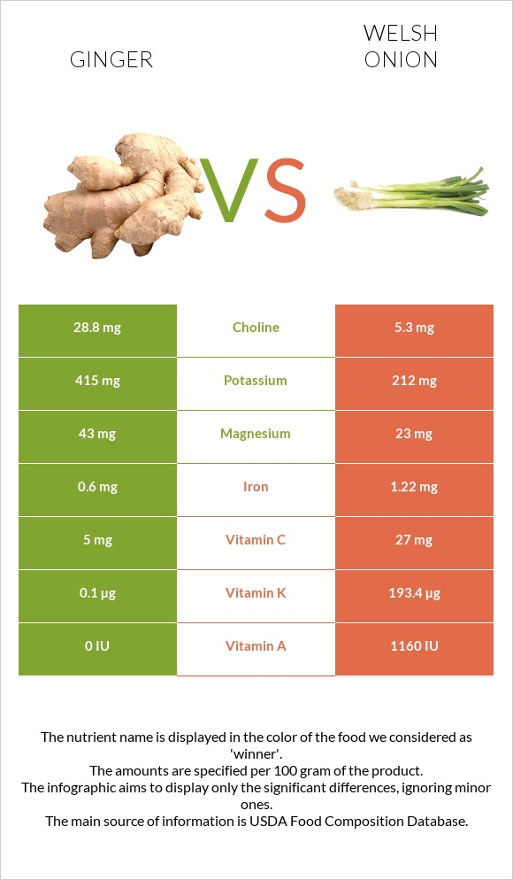 Ginger vs Welsh onion infographic