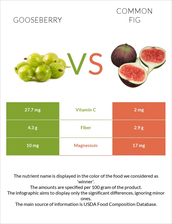 Gooseberry vs Common fig infographic