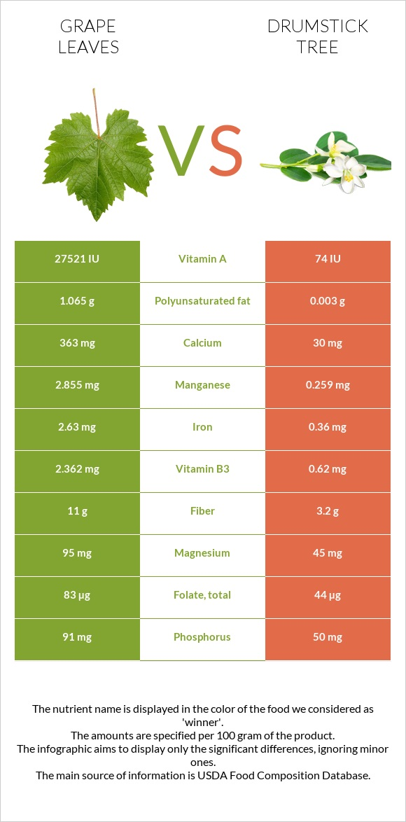 Grape leaves vs Drumstick tree infographic