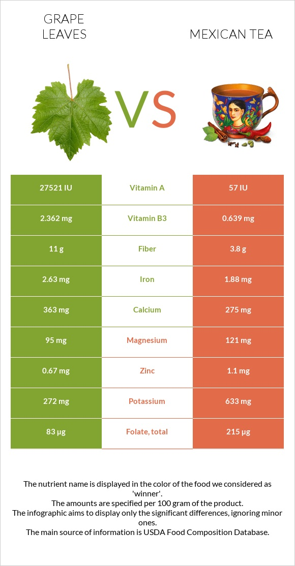 Grape leaves vs Mexican tea infographic