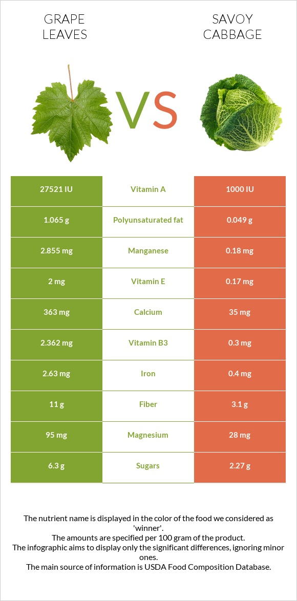 Grape leaves vs Savoy cabbage infographic