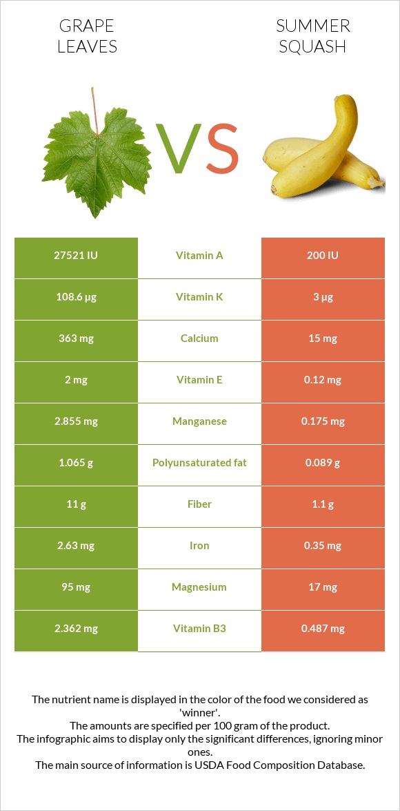 Grape leaves vs Summer squash infographic