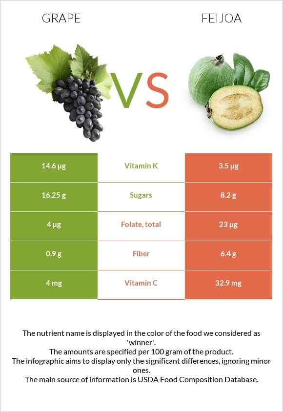 Grape vs Feijoa infographic