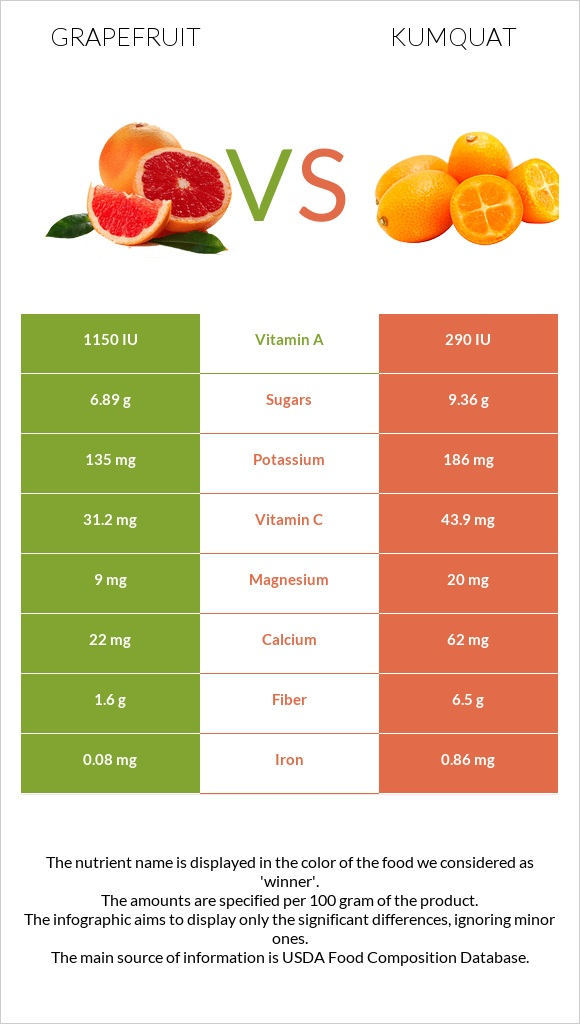 Grapefruit vs Kumquat infographic